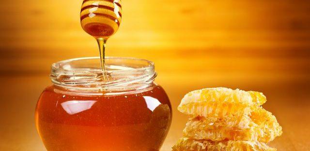 В СЭЗ «Сугд» будет производиться экологически чистый мед